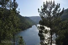 From A Coba to Belesar (Snia Pereda) Tags: summer naturaleza nature water river vines natura galicia nubes nvols viedos ribeirasacra galcia
