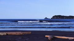 montegue island beach 1983 (CB in AK) Tags: summer beach alaska driftwood montegue