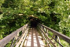 Bridge, Roslin Glen (Colin Myers Photography) Tags: bridge colin photography glen myers midlothian roslin roslinglen edinburghphotography colinmyersphotography