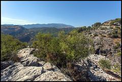 ARROYO HORCAJO (ESOX LUCIUS) Tags: mountains holland spain taco ronda andalusia 2013 arroyohorcajo
