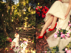 Love, wedding (Ju Link) Tags: link ju ảnh đẹp cưới aubestudio