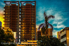 Sunset (chinakarl (very busy)) Tags: sunset buildings evening taiwan palmtrees taichung d3s nukin