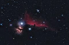 Barnard 33, the Horsehead Nebula (Astronewb2011) Tags: 50mm nikon borg nebula orion barnard phd horsehead lodestar b33 Astrometrydotnet:status=solved d5100 zeq25 125sd Astrometrydotnet:id=supernova11417