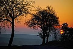 Having a good morning! (Tobi_2008) Tags: trees sky color nature sunrise germany landscape deutschland saxony natur himmel ciel arbres sachsen tobi landschaft farbe bume sonnenaufgang allemagne germania supershot platinumheartaward mygearandme mygearandmepremium mygearandmebronze vision:sunset=074 vision:mountain=0711 vision:sky=0796 vision:outdoor=0801