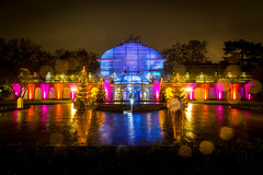 lighting light art canon germany deutschland lights europa europe long exposure nightlights colours dusk frankfurt led palmengarten langzeitbelichtung lapp winterlichter cfaobam