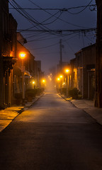 Madeira Morning (Cheryl Atkins) Tags: street city morning houses mist fog dark lights early quiet maryland baltimore calm cables wires lampposts butchershill eastbaltimore madeirastreet