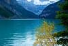 DSC06150 (PJRowntree) Tags: autumn canada fall colors glacier alberta lakelouise victoriaglacier