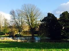 Stockbridge Water Meadows (HerryLawford) Tags: test river stockbridge floods watermeadows