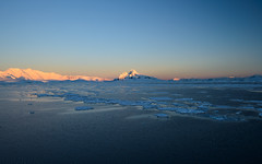 20131205_225316_Antarctica_D800_6473.jpg (Reeve Jolliffe) Tags: world cold ice ed nikon zoom antarctica if environment icy nikkor southernocean continent vr afs antarctic ecosystem southernhemisphere swm antarcticpeninsula greatsouthernocean expeditioncruise polarclimate antarcticcircle adventurecruise nanocrystalcoat smallshipcruise 1635mmf4vr d800e australocean
