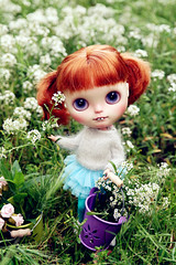 BunBun is in the Garden