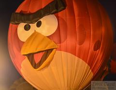 Bird On! (errolgc) Tags: newzealand bird balloon hamilton universityofwaikato balloonsoverwaikato2014 cameronsphere105n333abangry nightglow2014