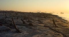 Bonnet Carre Beach (Scott Mohrman Photography) Tags: morning sunset beach nature sunrise river mississippi scott boats photography dawn golden boat ship dusk ships neworleans shoreline shore hour bluehour spillway mohrman bonnetcarre bonnetcarrespillway