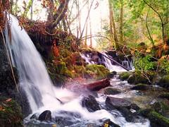 Ro Dos Peitieiros (Rodacelta Gelucho) Tags: espaa ro galicia gondomar pontevedra cascada fervenza