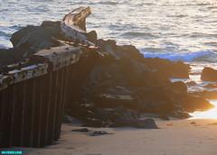TwistedJettyII (mcshots) Tags: ocean california wood winter sunset sea usa beach nature water reflections coast sand rocks jetty stock shoreline socal mcshots damaged swells twisted timbers pdr losangelescounty