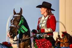 Cowgirl and prize horse (sniggie) Tags: roses horse festival kentucky parade celebration louisville cowgirl equestrian kentuckyderby kentuckyderbyfestival jeffersoncounty us31 pegasusparade