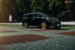 Toyota Vellfire | VX810