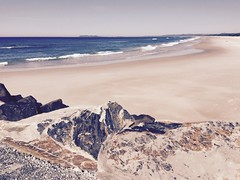 Chillaxing by the sea (YAZMDG (15,000 images)) Tags: ocean beach australia nsw brunz northernrivers brunswickheads