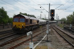 "English Welsh & Scottish Railways Liveried Class 66/0, 66197 (37190 ""Dalzell"") Tags: gm shed db northwestern revised wigan generalmotors class66 ews maroongold 66197 class660 englishwelshscottishrailways dbcargorail"