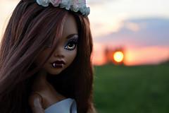 Beautiful Clawdeen  (dasha.savitskaya13) Tags: pink blue orange brown white black cute girl beautiful grass monster rose grey photo spring big high nice wolf doll purple pastel collection clawdeen monsterhigh