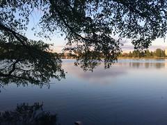 Helsinki (Flemming Andersen) Tags: lake water spring helsinki