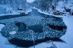Kitkajoki Myllykoski 7402 by Olli Lamminsalo (www.finnature.com) Tags: winter finland kuusamo february talvi helmikuu myllykoski kitkajoki jlautat