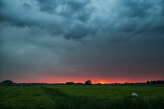 Sunset w/ clouds @ Mijdrecht (PaulHoo) Tags: sunset sky sun holland color green nature netherlands rain clouds contrast landscape shower swan nikon cows farmland 2016 mijdrecht d700