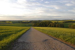 Country Road (Lumografie) Tags: evening countryside sonnenuntergang wiesen himmel hills landschaft abendstimmung hgel frankenberg strase