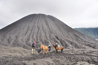 mont bromo - java - indonesie 29