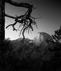 Half Dome (Dennis_Ramos) Tags: halfdome yosemite nationalpark california blackandwhite fineart dennisramos tamron 2470mm tamronsp2470mmf28divcusd