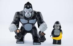 Lego Gorilla Band (Alex THELEGOFAN) Tags: lego gorilla grodd banana monkey tan brown