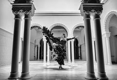 Victoria Duar (BrN) Tags: blackandwhite dancer flamenco canon5dsr
