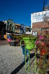 Colours of Bells in the City (Jocey K) Tags: autumn trees newzealand christchurch sky people st architecture buildings may cbd regent cathedralsq bellspotplantsplantsshadowsstreetnew