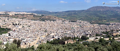 Medina of Fz overlook (dieLeuchtturms) Tags: panorama morocco fez maroc medina afrika marokko fes fs fz fesboulemane 7x3 21x9 235x100
