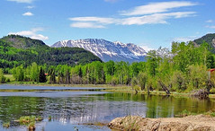 Toad River (sdowens19631) Tags: canada mountains landscape northwest britishcolumbia toadriver