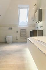 3L5A6348 (terrygrant1) Tags: bathroom porcelain tiling
