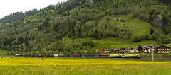 1446_2016_05_24_sterreich_Dorfgastein_CARGO_CargoServ_1216_932_&_1216_933_mit_Coilzug_&_1216_031_Villach (ruhrpott.sprinter) Tags: railroad schnee salzburg train germany logo deutschland graffiti austria ic sterreich diesel natur wiese eisenbahn rail zug cargo 64 berge nrw passenger es lm blume fret ore gelsenkirchen ruhrgebiet f4 freight bb badgastein locomotives 189 lokomotive amtc cityshuttle sprinter badhofgastein ruhrpott gter 1144 dorfgastein ekol 1116 dispo europischer 6189 mrce tauernbahn lokomotion reisezug rpool dispolok nordrampe ellok cargoserv logserv intercombi lokfhrerschein gastainertal rocktainer