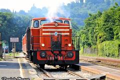 Cne517 Treno dei Sapori Trenord (Daniele Monza) Tags: cne trenodeisapori trenord