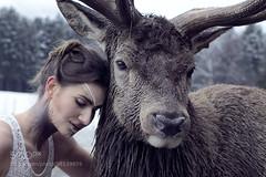 The girl and the beautiful deer (joebizconsult) Tags: winter wild woman brown white snow nature girl beautiful wow hair eyes sweet lips deer diana cuddle frau hunt hirsch jagd wildness kuscheln ss 500px ifttt