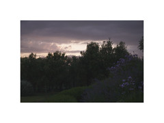 (Sara Fiore ph.) Tags: light sky colors clouds landscape grosseto reportage