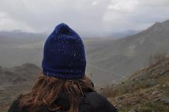DSC_0816 (David.Sankey) Tags: alaska alaskarange mountains mountainrange denali denalinationalpark hiking nature park nationalparkdenalinationalparkandpreserve mckinley travel fog rivers savageriver savagealpinetrail trial savagealpine