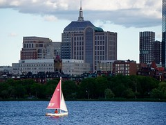 Pink Sailboat ((Jessica)) Tags: pink summer water boston sailboat massachusetts charlesriver newengland sailboats