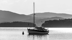 Lake view (Akito-X) Tags: lake boot see boat blackwhite tschechischerepublik hills berge cz schwarzweiss moldau jihoeskkraj moldaustausee ernvpoumav
