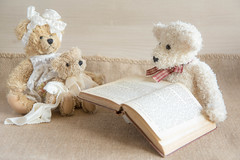 187/366: Read it again Daddy (judi may) Tags: book teddies teddybears tabletopphotography canon7d day187366 teddybeartuesday happyteddybeartuesday 366the2016edition 3662016 5jul16