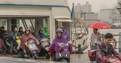Ferry wet (stevefge) Tags: bridge china ferry nanpubridge shanghai street people rain candid wet umbrellas reflectyourworld
