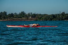 Água e os Esportes em Brasília (João Guilherme de Carvalho) Tags: sol brasília natureza lifestyle liberdade felicidade diversão rowing lazer remo saúde lagoparanoá estilodevida canoahavaiana standuppadlle
