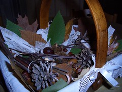 Nature Morte (pierrearnaud78) Tags: marron bois feuilles naturemorte pommedepin