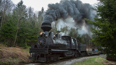 Spruce Trees and Coal Smoke (Jason Lowe Photography) Tags: railroad heritage history tourism train vintage scenic railway tourist steam westvirginia restored shay locomotive cass railfan freight excursion