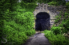 Central park Bridge and tunnel in the Ravine- (Tattooed JJ) Tags: nyc ny june pentax centralpark manhattan 17 k5 singingwithlight photographysingingwithlightphotography theravine17centralparkk5nynycsingingwithlightjunemanhattanpentaxphotographysingingwithlightphotography