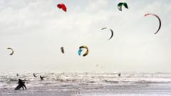 Muriwai Beach-Kite Surfer (scrumpy 10) Tags: newzealand kite beach nikon aotearoa neuseeland d800 muriwai kitesurfer muriwaibeach jacqualine ozeanien scrumpy10
