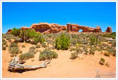 Arches National Park (Phil Rettke) Tags: red utah log ut desert arches stick archesnationalpark